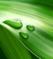Systém environmentálneho mana¾érstva ISO 14001
